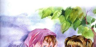 До первого дождя — Осеева Валентина