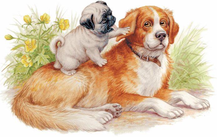 Играющие собаки — Ушинский Константин