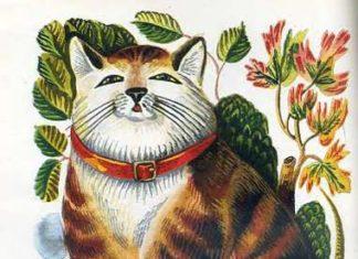 Кот Васька - Толстой Алексей