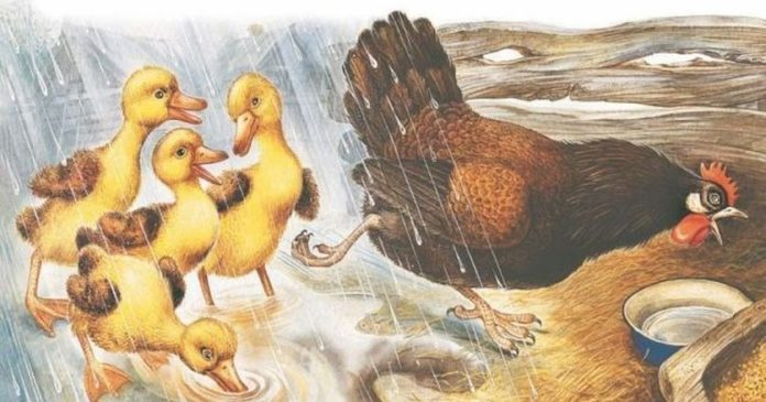 Курица на столбах — Пришвин Михаил