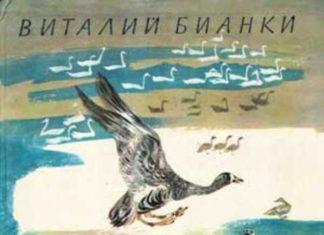 На великом морском пути — Бианки Виталий