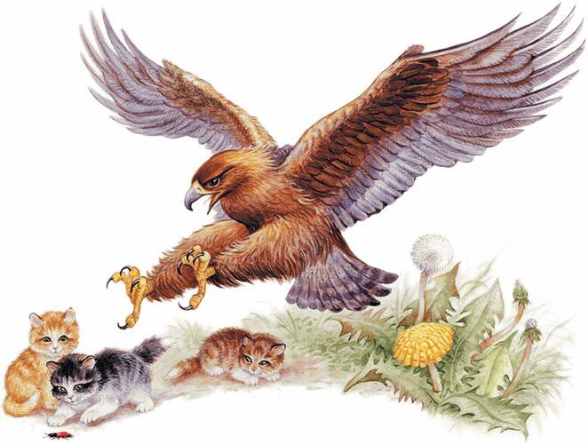 Орёл и кошка — Ушинский Константин