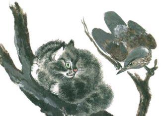 Почему Тюпа не ловит птиц — Чарушин Евгений