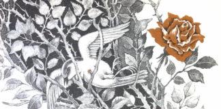Соловей и роза — Оскар Уайльд
