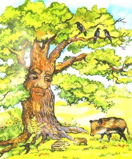 Спор деревьев — Ушинский Константин