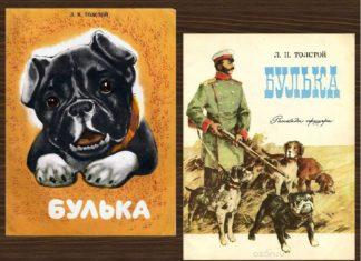 Булька (Рассказ офицера) — Толстой Л.Н.