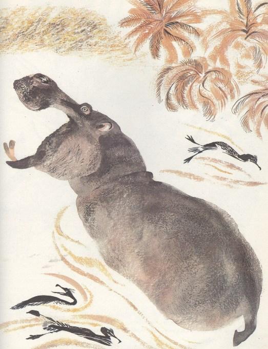 Моя первая зоология — Чарушин - бегемот