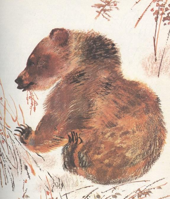 Моя первая зоология — Чарушин - медведь