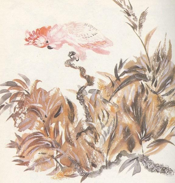 Моя первая зоология — Чарушин - попугай какаду