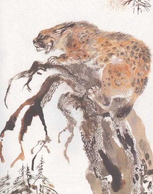 Моя первая зоология — Чарушин - рысь