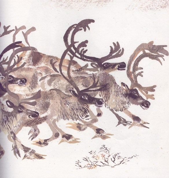 Моя первая зоология — Чарушин - северный олень