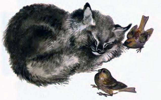 Пунька и птицы — Чарушин Евгений