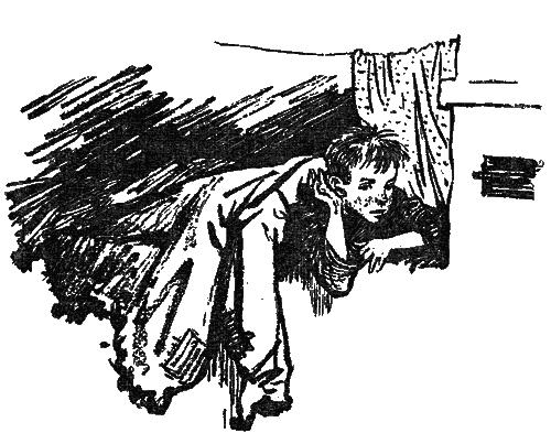 Бандитское гнездо — Гайдар Аркадий