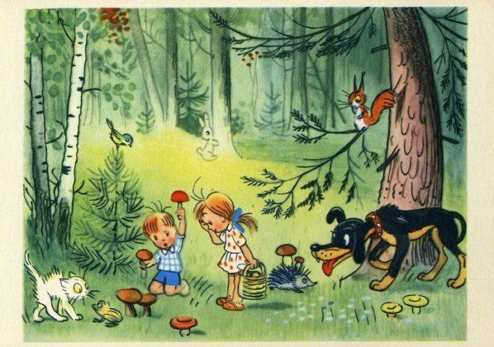 Мы в лесу — Сутеев Владимир