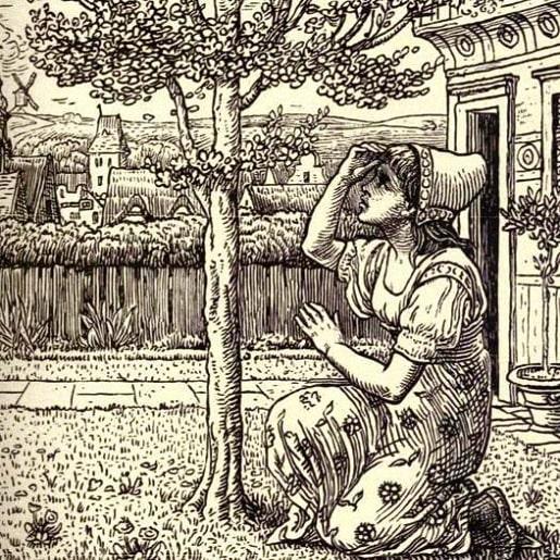 Сказка про можжевельник — Братья Гримм
