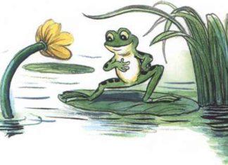 Зелёный лягушонок и жёлтая кувшинка - Пляцковский Михаил