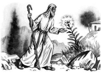 Житель Афонской горы - Одоевский Владимир