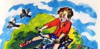 Мотогонки по отвесной стене — Драгунский Виктор