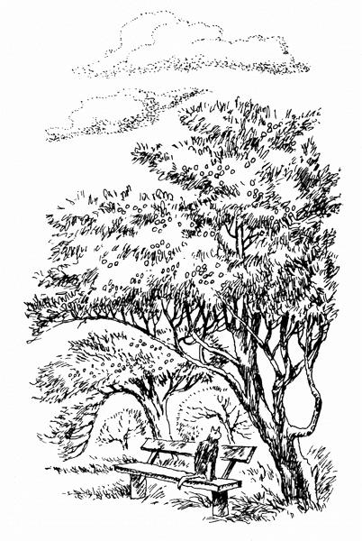 Наш сад (Рассказы старого садовника) — Пришвин Михаил