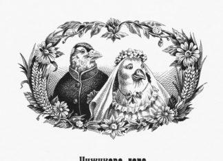 Чижиково горе - Салтыков-Щедрин