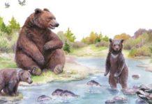 Купание медвежат - Бианки Виталий