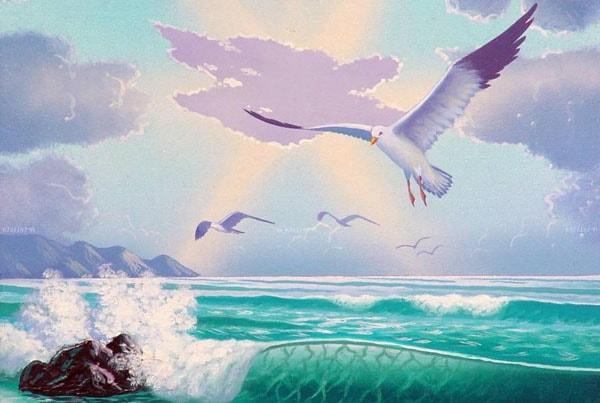 Почему чайки белые — Бианки Виталий